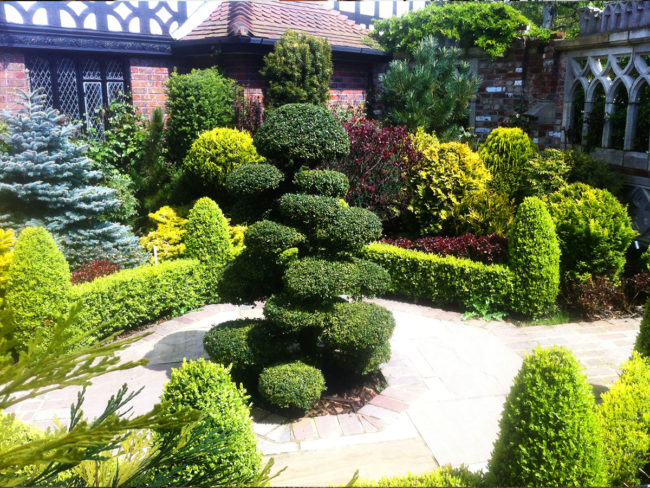 Garden Design Keston