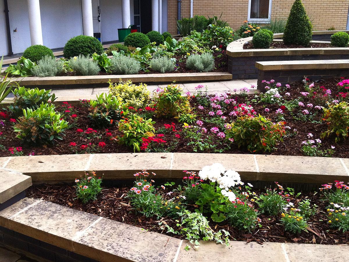 Landscape Gardeners Blackheath