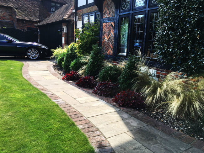 Plants & Lawns Chislehurst